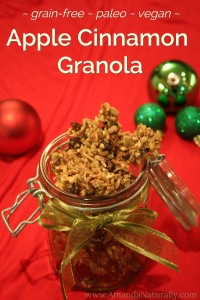 apple cinnamon granola - grain free paleo vegan - Amanda Naturally