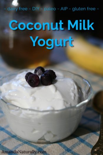 Coconut Milk Yogurt | dairy-free, gluten-free, paleo, AIP | AmandaNaturally.com